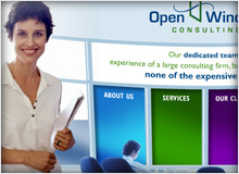 Open Window Consulting